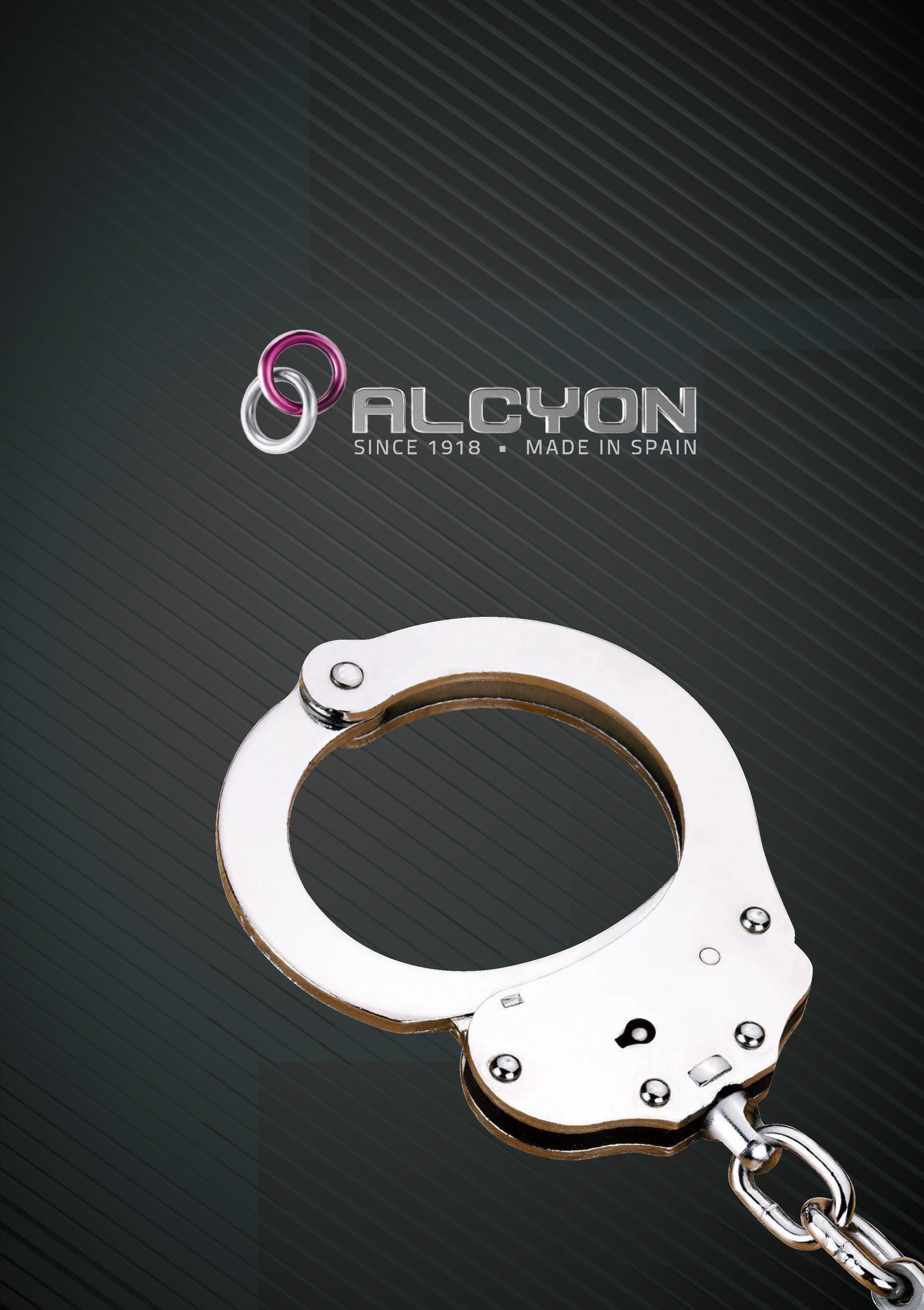 Catalog - Alcyon 2017